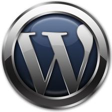 وردپرس وبلاگ نویسان را برای ارسال هر روز یک پست در سال ۲۰۱۱ به مبارزه طلبید!