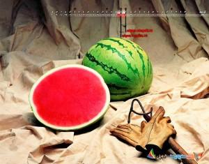 17-watermelon_tri-x_brandsunrise