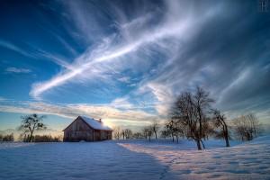 winter-d