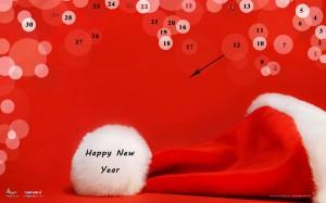 تقویم های دی ماه 1391