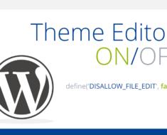 wp-editor-on-vi
