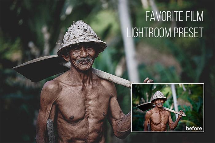 Favorite Film Lightroom Preset