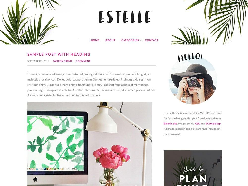 Estelle-Free-WordPress-Theme-for-bloggers