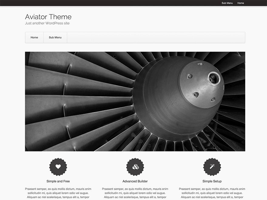 aviator theme (1)