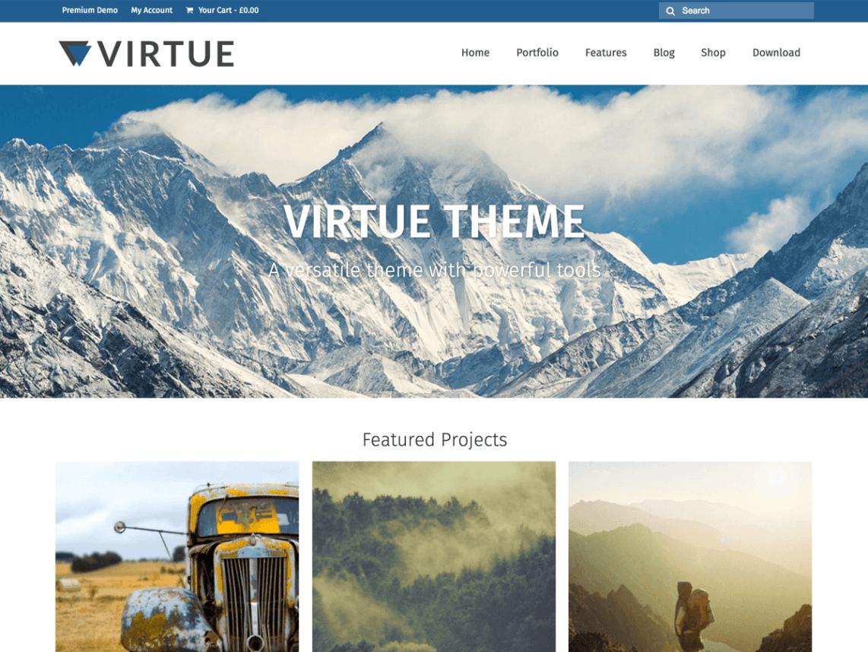 virtue theme (1)
